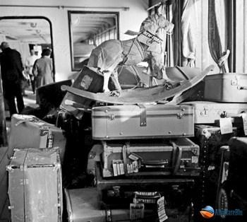 bagagli-passeggeri-crociera
