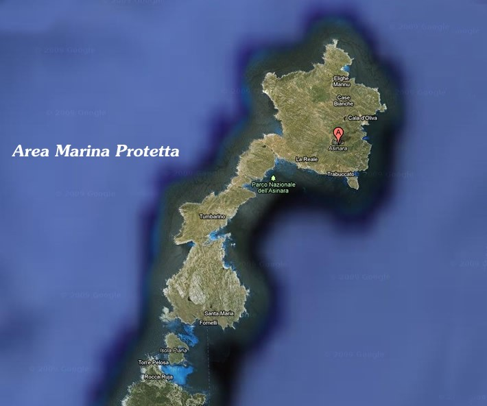 parco-nazionale-asinara