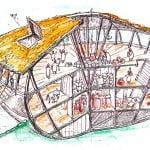 Arca-Noe