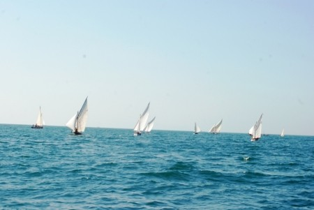 regate-barche-vela-latina