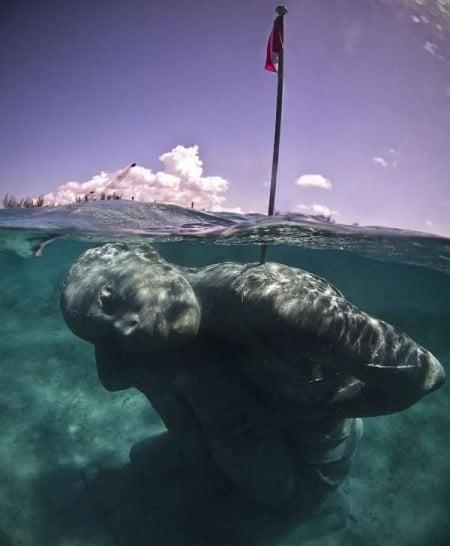 Ocean-Atlas-Jason-deCaires-Taylor-Nassau-Bahamas