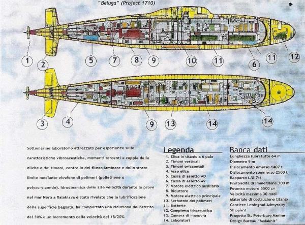 Beluga Projet 1710