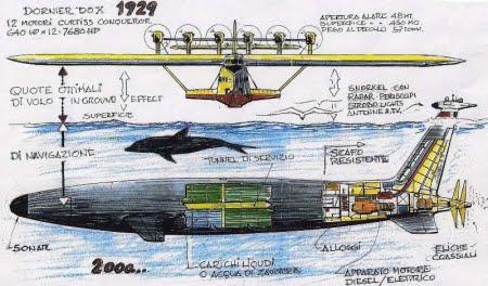Gabbiano o Delfino? di Franco Harrauer