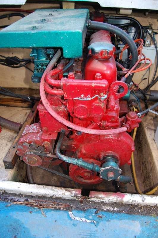 Motore: alternatore - pompa acqua di mare - pompa benzina