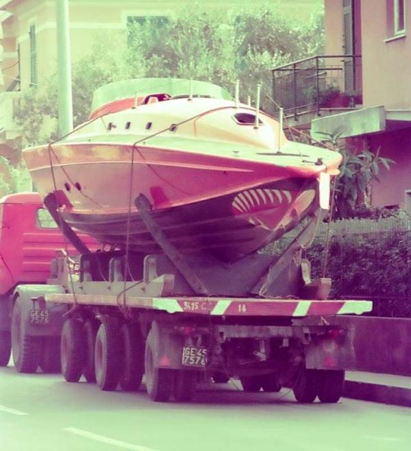Delta Tiger: trasporto