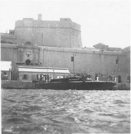 MAS 452 catturato_Malta (2)