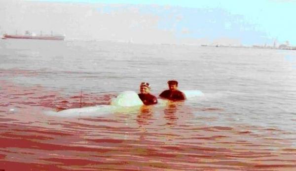 Anni 70. Pucciarini nel porto di Livorno collauda un CE2F-X60