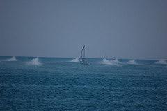 Barche che sfilano attorno alla barca a Vela