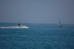 Barca Guardia Costiera che va a far spostare la barca a vela