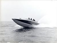 Pierino-Levi-Dino su G50