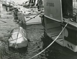 motvedetta-guardia-costiera