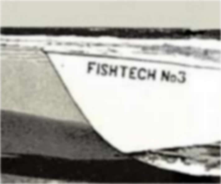 fishtech V profonda Levi