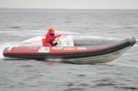 Bellaria motonautica
