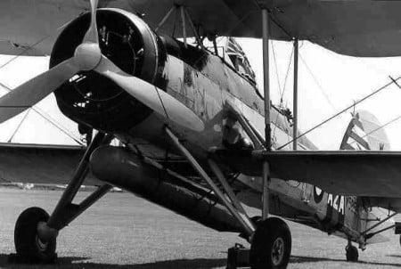 aereosilurante-Swordfish-a