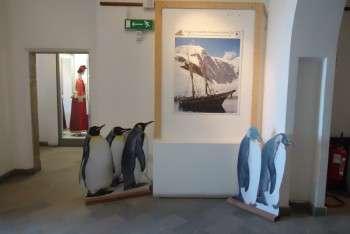 Mostra fotografica viaggi in Antartide di Giovanni Ajmone Cat a Nettuno