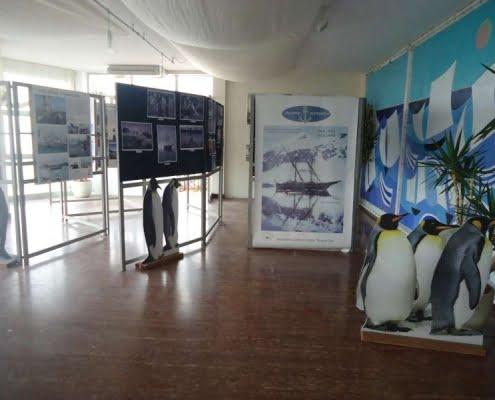 Viareggio: Mostra video-fotografica viaggi Antartide