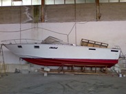 Squalo-28