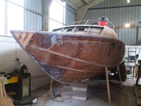 delta-24-levigata-legno-vivo