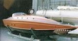 delta-tiger-levi