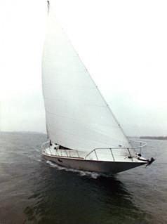 Levi Harrauer barca exocetus volans a vela