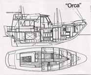 20 Orca