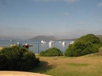 Cala Reale Asinara parco boe