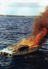 Don Aronow Maltese Magnum a fuoco