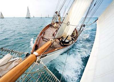 Patience in regata
