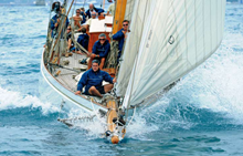 Patience in regata